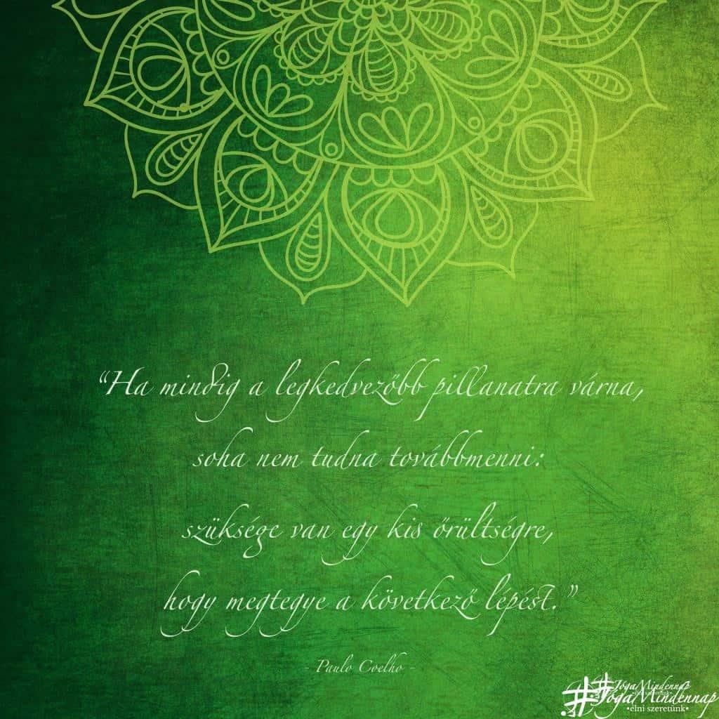 """""""Ha mindig a legkedvezőbb pillanatra várna, soha nem tudna továbbmenni... - Paulo Coelho idézet - Jóga Mindennap motiváció megerősítés meditáció jógavideó"""