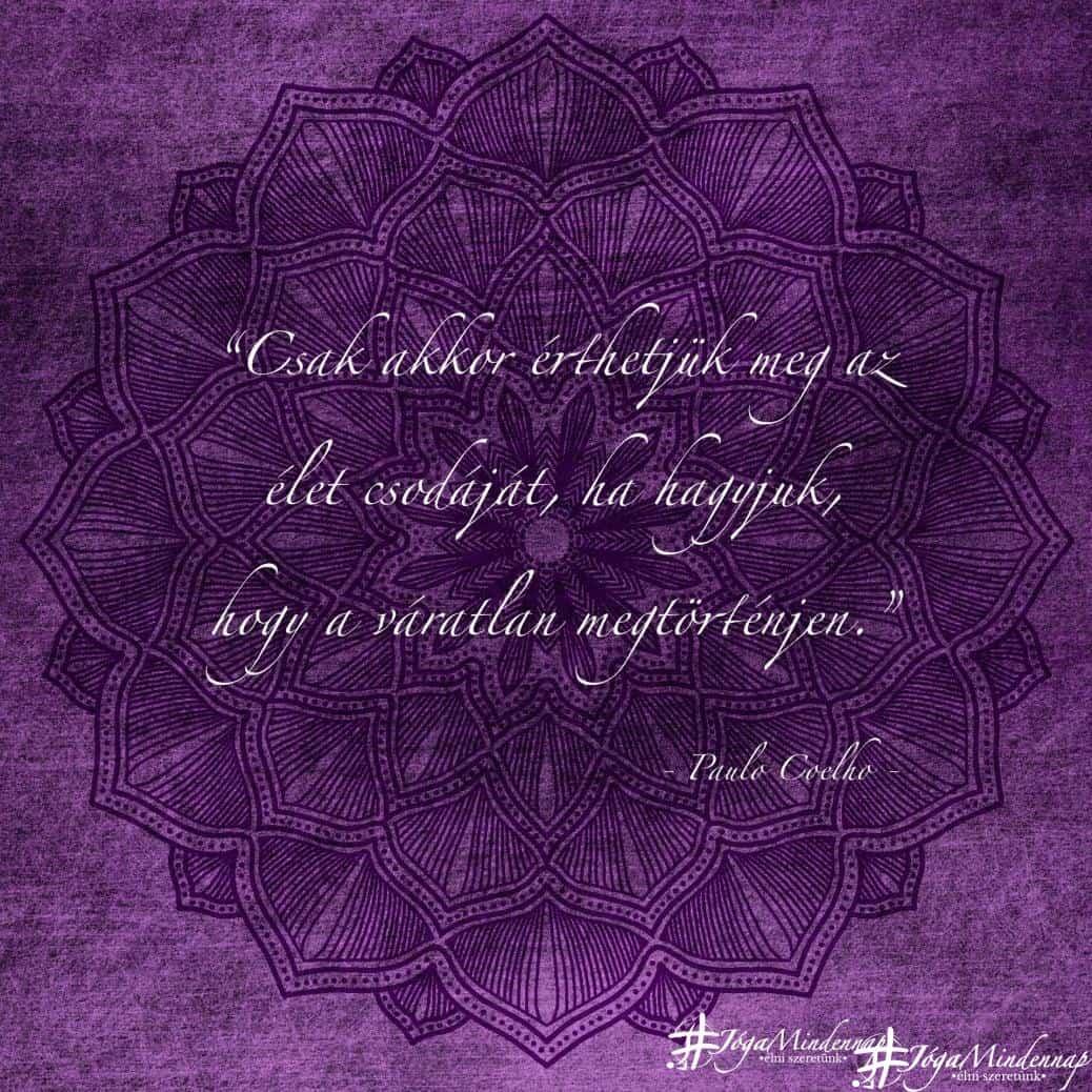 Csak akkor érthetjük meg az élet csodáját, ha hagyjuk, hogy a váratlan megtörténjen - Paulo Coelho idézet - Jóga Mindennap
