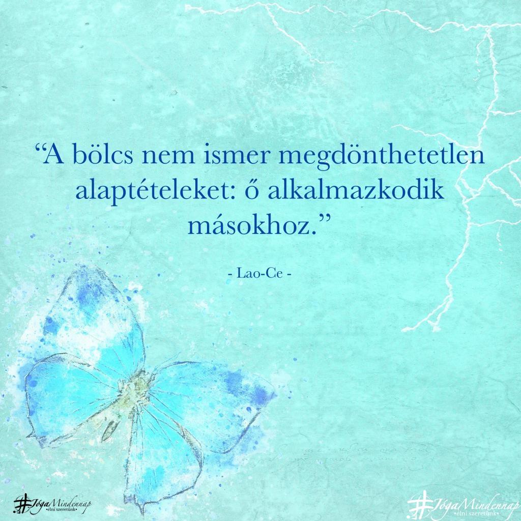 """""""A bölcs nem ismer megdönthetetlen alaptételeket: ő alkalmazkodik másokhoz."""" - Lao-ce idézet - Jóga Mindennap megerősítés motiváció meditáció"""