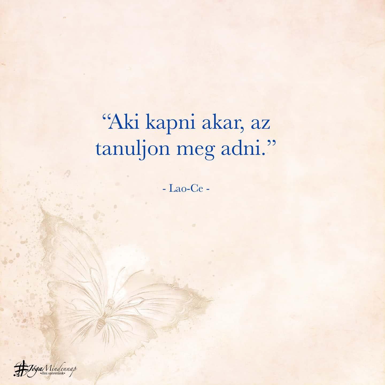 """""""Aki kapni akar, az tanuljon meg adni."""" - Lao-ce idézet - Jóga Mindennap motiváció, meditáció megerősítés bölcselet elvonulás"""