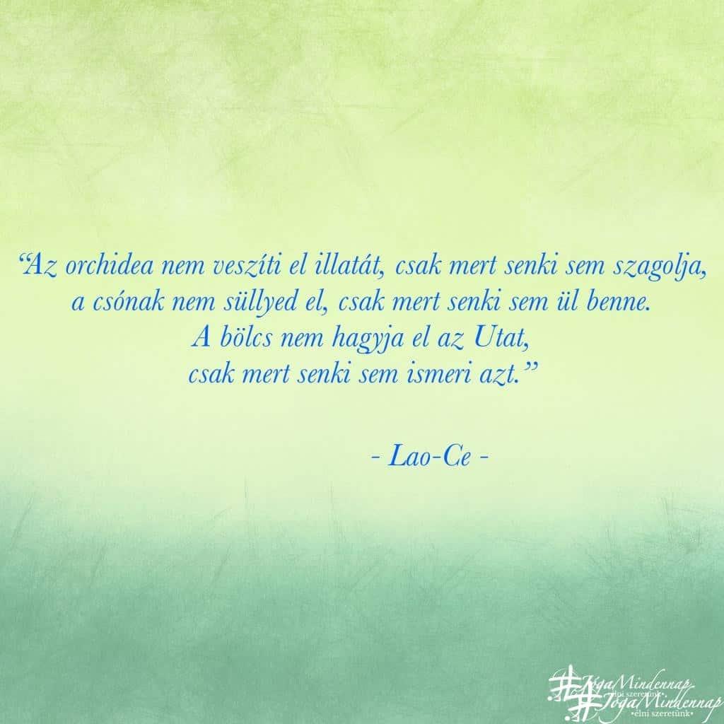 Az orhidea nem veszíti el illatát, csak mert senki sem szagolja. - Lao-Ce idézet - Jóga Mindennap motiváció meditáció napindító pozitív gondolat
