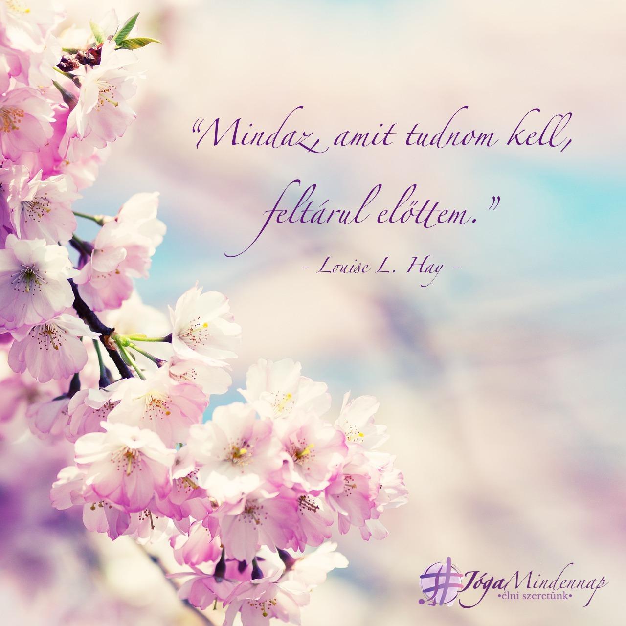 Mindaz, amit tudnom kell, feltárul előttem - Luoise Hay idézet - Jóga Mindennap megerősítés, motiváció, meditáció
