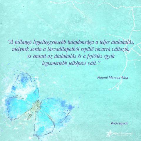 """""""A pillangó legjellegzetesebb tulajdonsága a teljes átalakulás ... napindító idézet meditáció megerősítés jóga mindennap"""