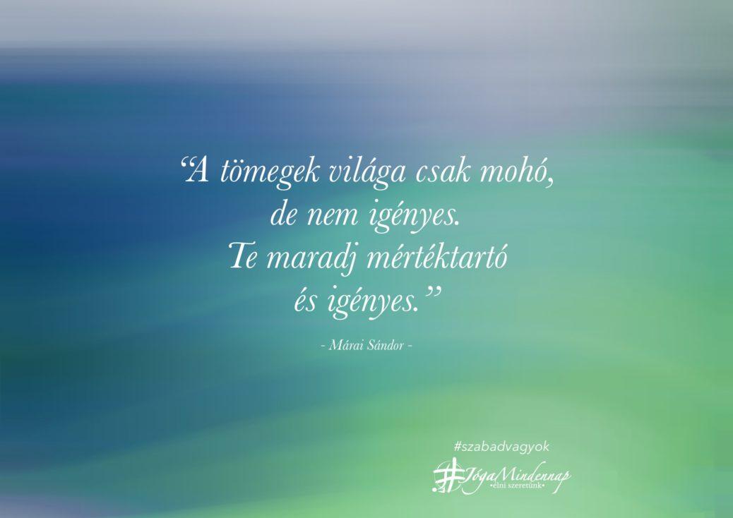 """""""A tömegek világa csak mohó, de nem igényes - napindító idézet Márai Sándor meditáció megerősítés Jóga Mindenanp"""