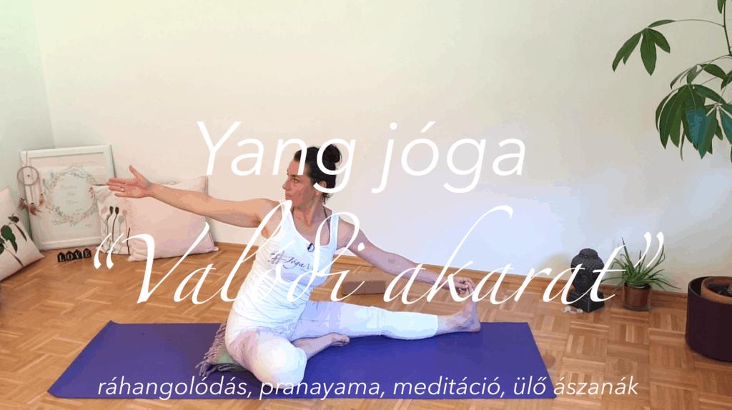 Yang jóga - Ráhangolódás, pranayama, meditáció, ülő ászanák - Valódi akarat női jóga 8 cover copy